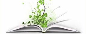 biblioteca_verde