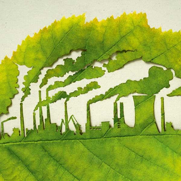 frunze-schimbari-climatice