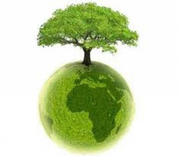 glob_pamant_ecologic_verde_mediu_87714900_68210800