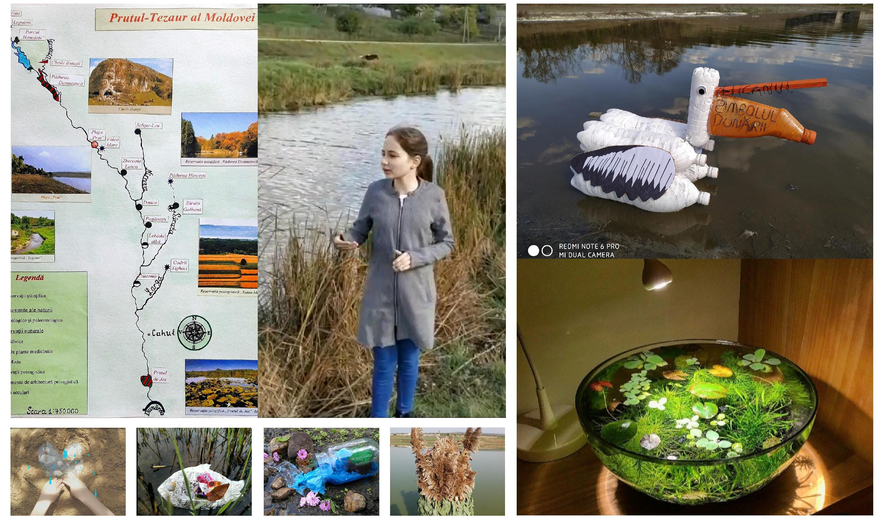 Green Nature Mood Board Photo Collage-page-001